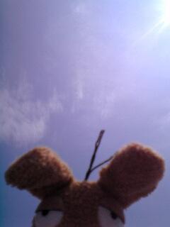 20040814-2.jpg