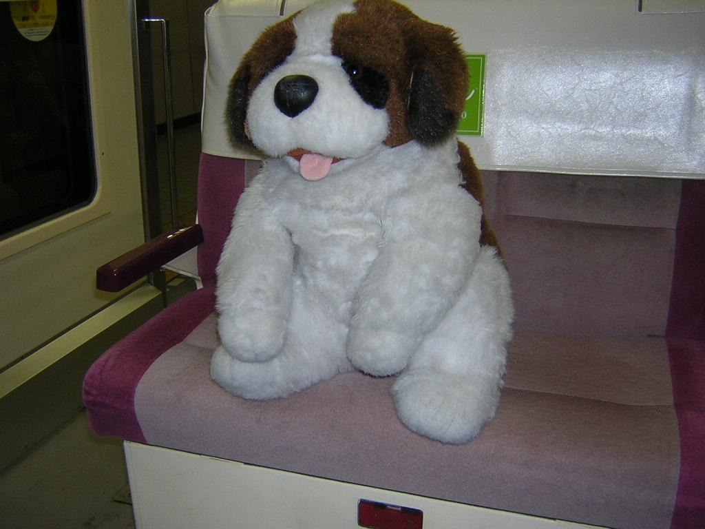20041123-3.jpg