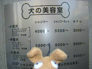 20050104-1.jpg