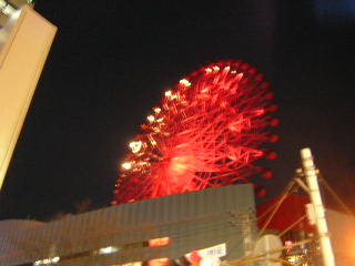 20050302-1.jpg